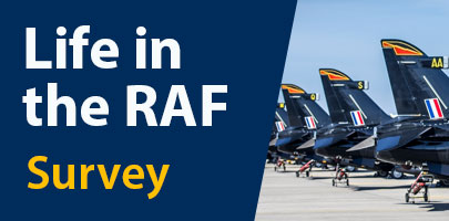 'Life In The RAF' Survey