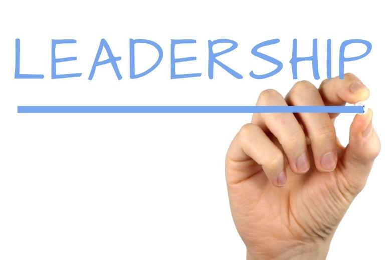 Development Programme For Emerging Leaders