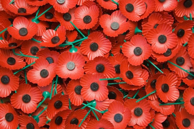 'Poppy-Up Shops' Ready For Centenary Appeal